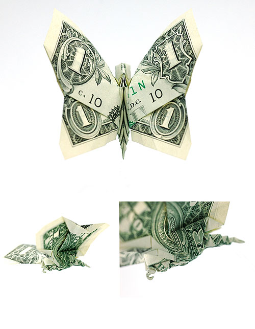 dollar bill origami butterfly. boooom origami dollar bill art