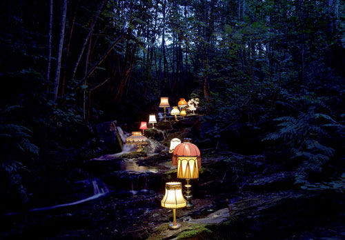 rune guneriussen lamps nature photography