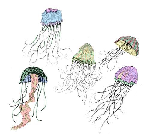 ashkahn graphic design illustration