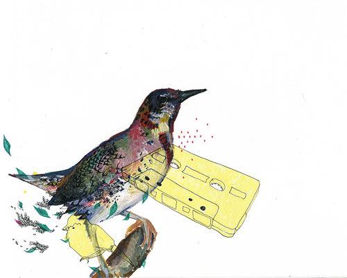charmaine olivia illustration illustrator