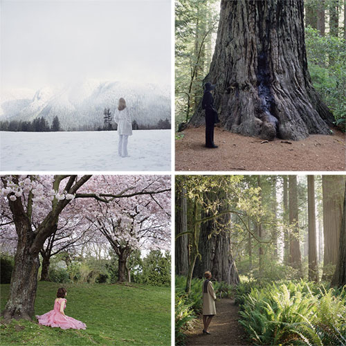 karin bubas vancouver canada photographer photography studies in landscapes and wardrobe