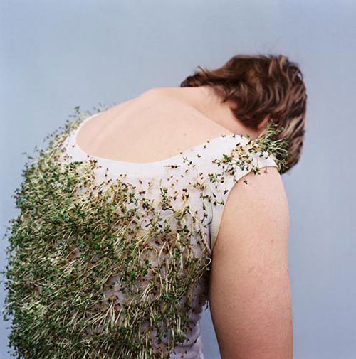 katrin binner photographer photography photosynthesen