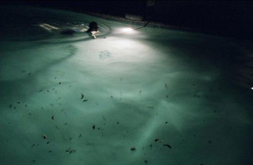 nina hartmann photography photographer polaroid film