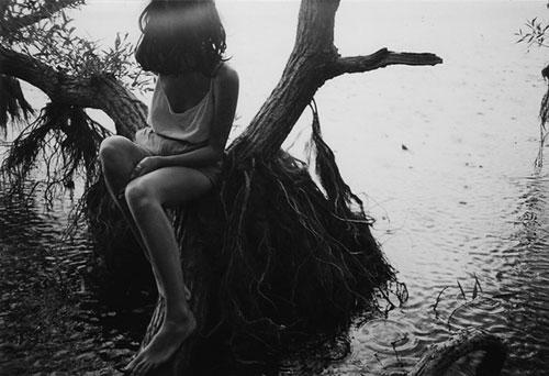 alison scarpulla photographer photography