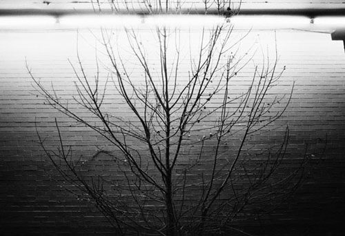 paul louis nelson photographer photography