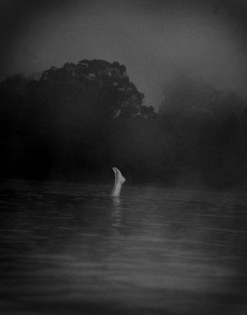 paul schiek photography photographer