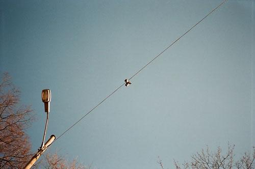 hans nostdahl photographer photography