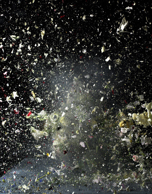 ori gersht photography photographer exploding flowers