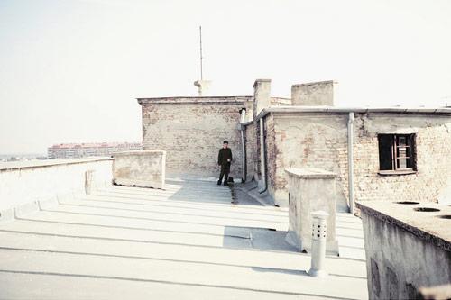 marija strajnic photographer photography serbian