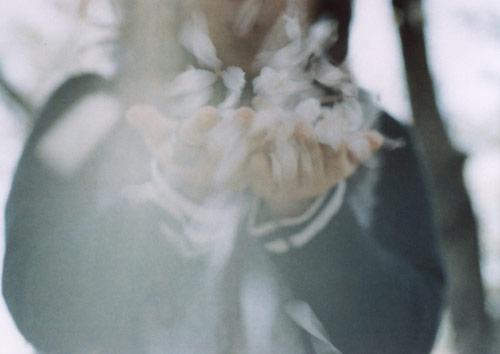 Mutsumi Makino photography photographer japan aurora print flickr