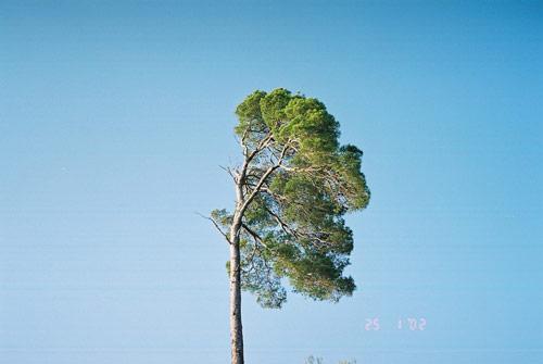 goran jovanovic photographer photography
