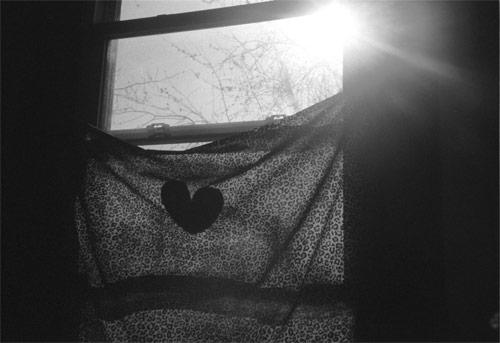 julie elizabeth simon photographer photography