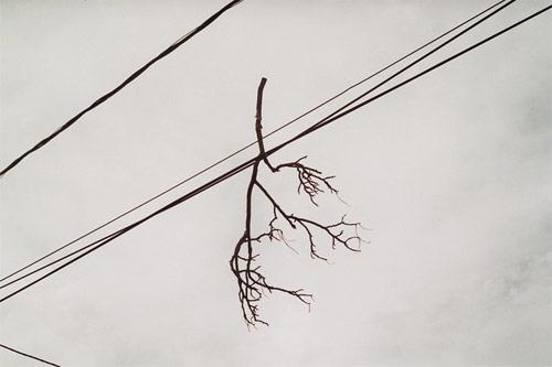 Nemanja Knezevic photographer photography