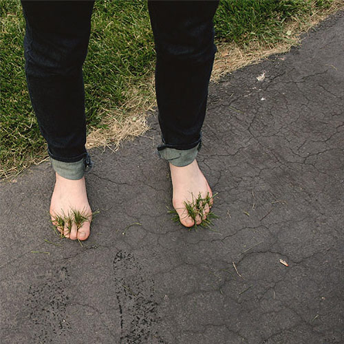 jenna popoli feet grass toes photography photo