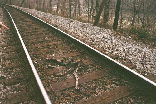 jenna popoli train tracks photography photo