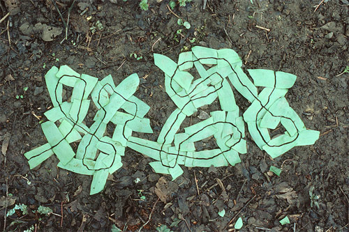 andy goldsworthy Torn line in garlic leaves british artist sculptor photographer andy goldsworthy