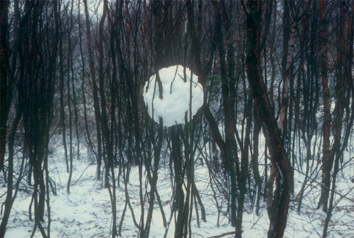 andy goldsworthy Snowball in trees british artist sculptor photographer andy goldsworthy