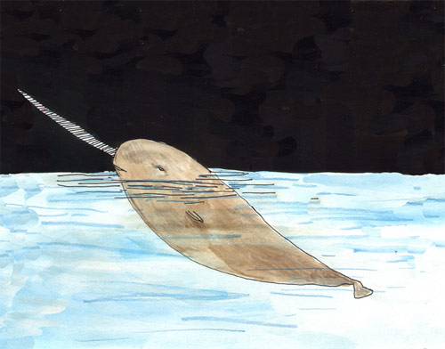 elizabeth graeber illustration illustrator baltimore narwhale