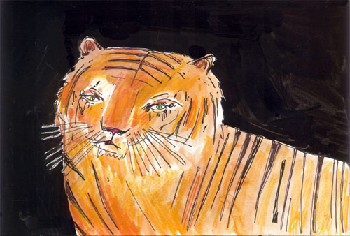 tiger elizabeth graeber illustration illustrator baltimore