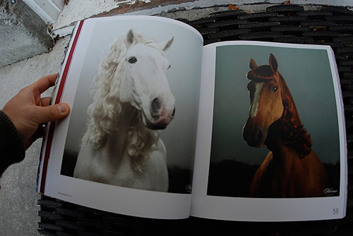 hair em scare em gestalten book horses wig publication art hair illustration photography