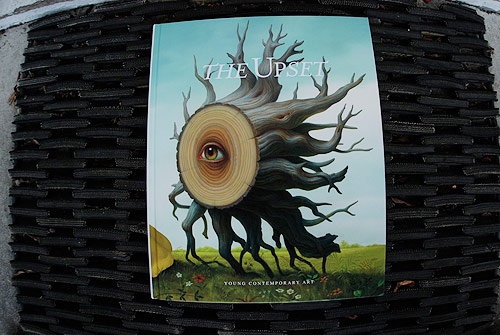 the upset young contemporary art gestalten book publication collection