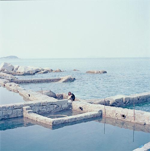 photographer photography zephyrance girl water lou china shanghai
