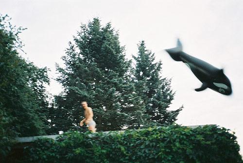 valeria picerno photographer photography