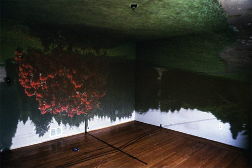 james nizam vancouver artist camera obscura anteroom photographer photography