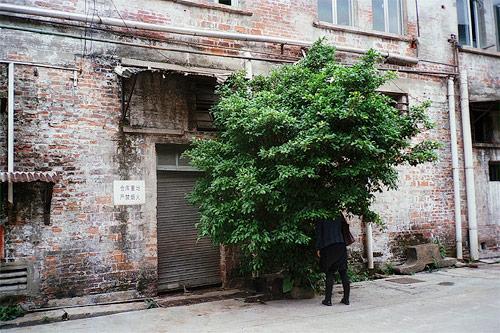 tang chan photographer photography china