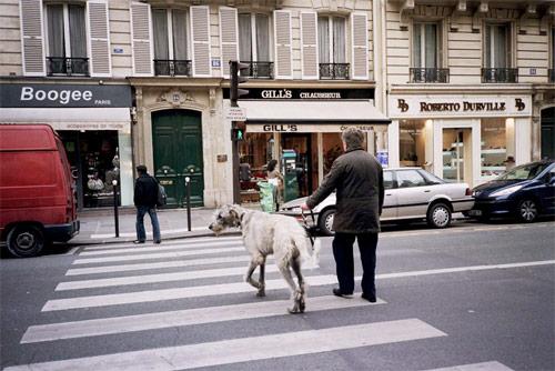 david luraschi photographer photography san francisco