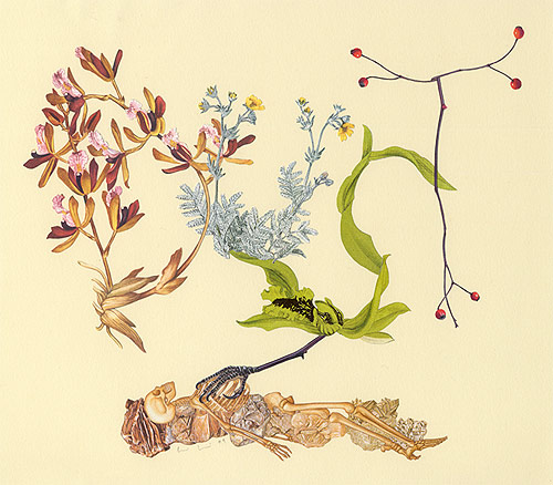 collage artist Alexis Anne Mackenzie