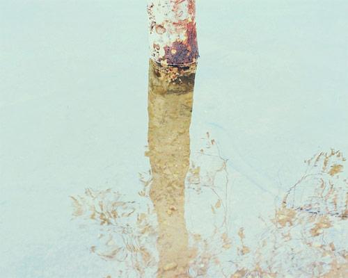 sofia torres photographer photography