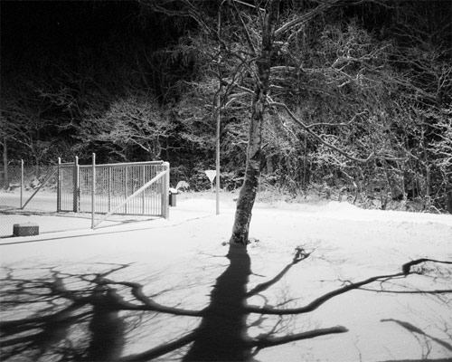 Photographer Gustav Gustafsson photography