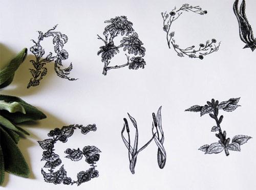 sasha prood type design illustration illustrator