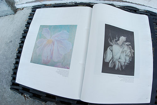 file magazine art photography issue 3