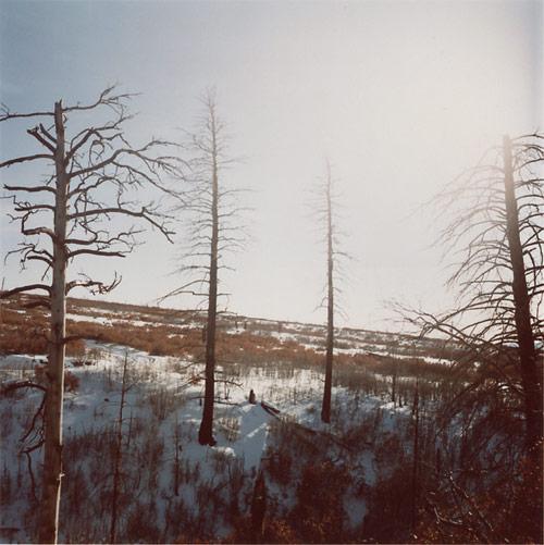 Photographer Mikael Kennedy