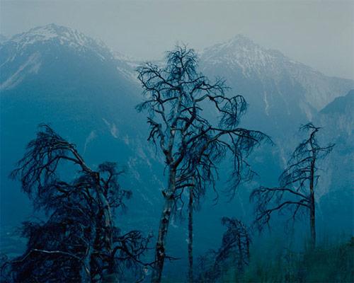 David Takashi Favrod photographer photography