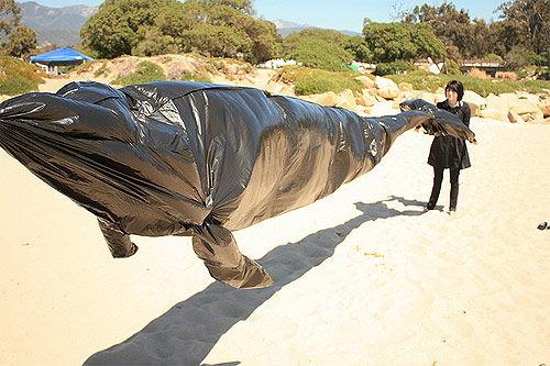 Garbage bag air whale by Matt Jones