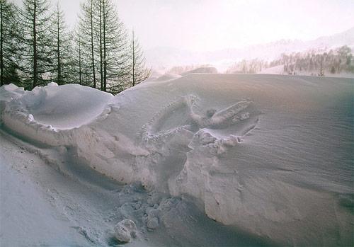 Photographer Aleksandra Perovic photography