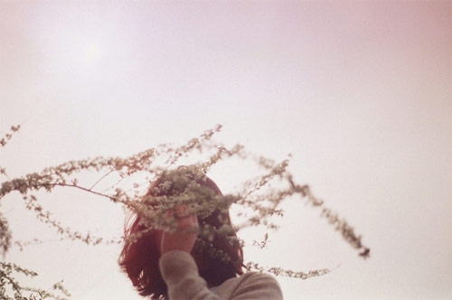 photographer photography li hui