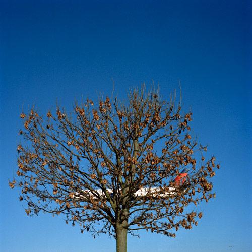 Photographer Ozant Kamaci photography series pause