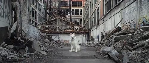 royksopp the drug music video