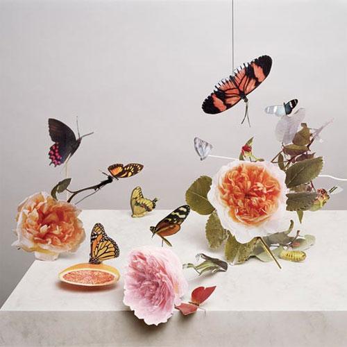 photographer photography art Maurice Scheltens and visual artist Liesbeth Abbenes