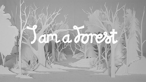 i am a forest stop motion animation alex schulz