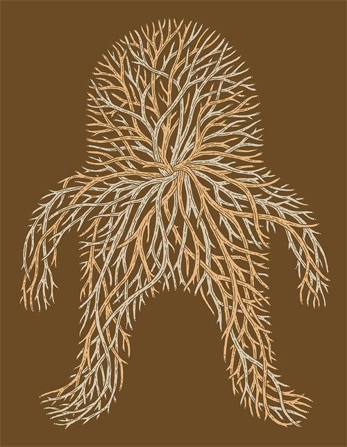 artist illustrator jesse jacobs illustration