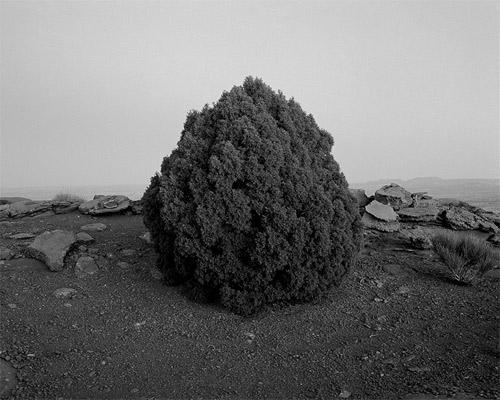 michael d lundgren photographer photography