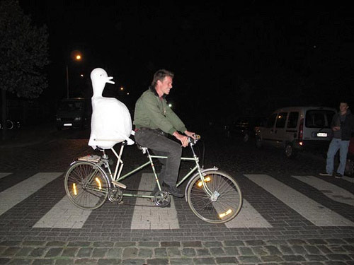 artist gerard herman ride tandem bike with bird