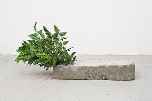 artist ethan greenbaum