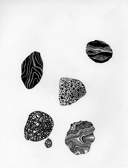 drawings by artist caitlin foster