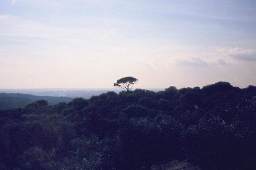 photographer photography damien rayuela